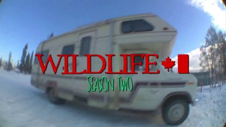 Wildlife Season 2!